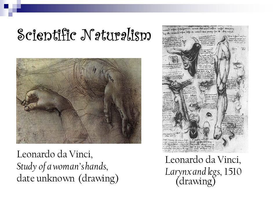 Scientific Naturalism Leonardo da Vinci, Study of a womans hands, date unknown (drawing) Leonardo da Vinci, Larynx and legs, 1510 (drawing)