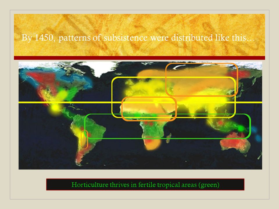 By 1450, patterns of subsistence were distributed like this… Horticulture thrives in fertile tropical areas (green)