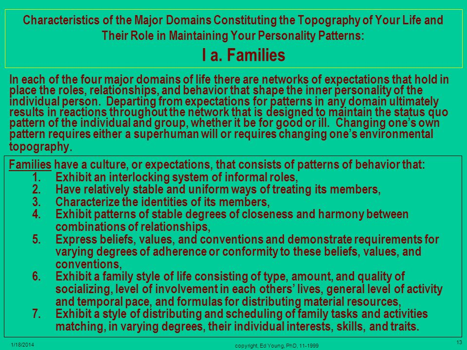 copyright, Ed Young, PhD, 11-1999 12 1/18/2014 I. Home - Family - Extended Family Domain Settings – Situations – Roles (Informal) - Relationships Comp