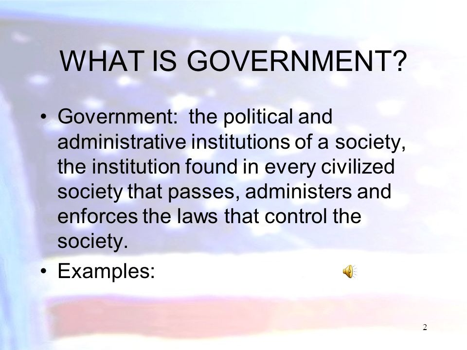 1 PRINCIPLES OF GOVERNMENT Government and the State