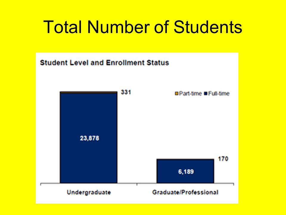 Total Number of Students