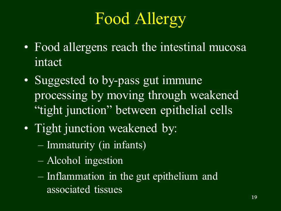 19 Food Allergy Food allergens reach the intestinal mucosa intact Suggested to by-pass gut immune processing by moving through weakened tight junction