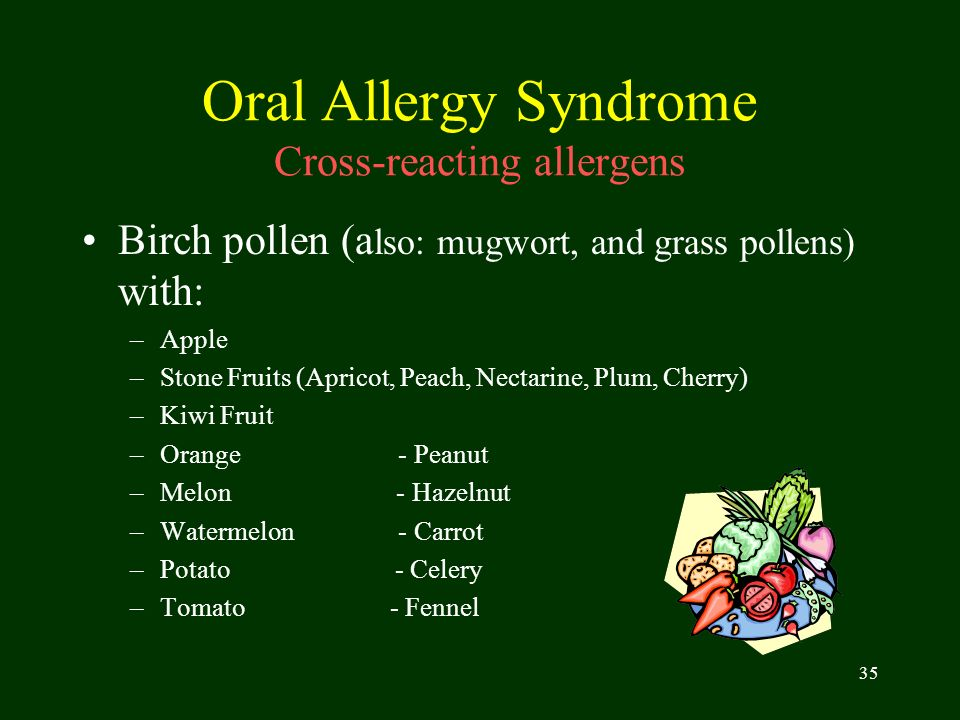 35 Oral Allergy Syndrome Cross-reacting allergens Birch pollen (a lso: mugwort, and grass pollens) with: –Apple –Stone Fruits (Apricot, Peach, Nectari