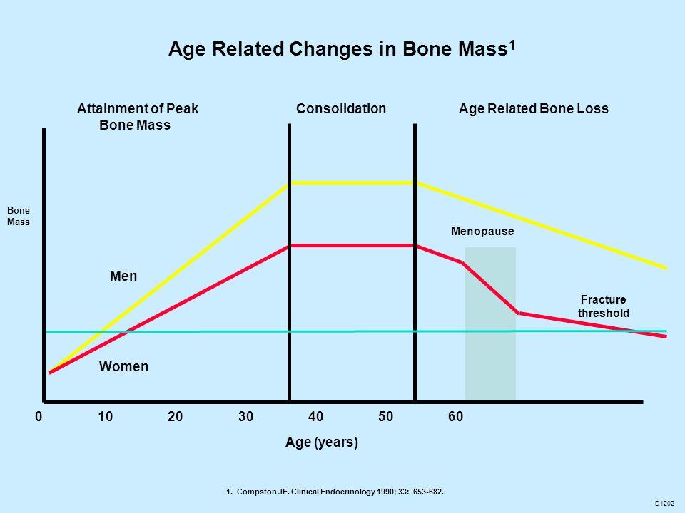 Bone Mass Age (years) Attainment of Peak Bone Mass ConsolidationAge Related Bone Loss Men Women Menopause 0 10 20 30 40 50 60 Fracture threshold 1. Co
