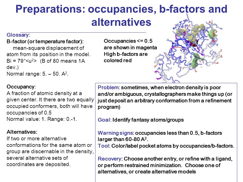 Preparations: occupancies, b-factors and alternatives Problem: sometimes, when electron density is poor and/or ambiguous, crystallographers make things up (or just deposit an arbitrary conformation from a refinement program) Goal: Identify fantasy atoms/groups Warning signs: occupancies less than 0.5, b-factors larger than 60-80 A 2.