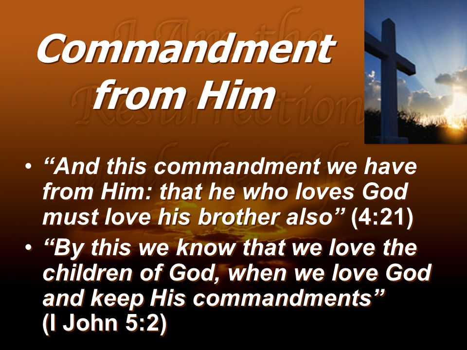 Commandment from Him And this commandment we have from Him: that he who loves God must love his brother also (4:21) By this we know that we love the c