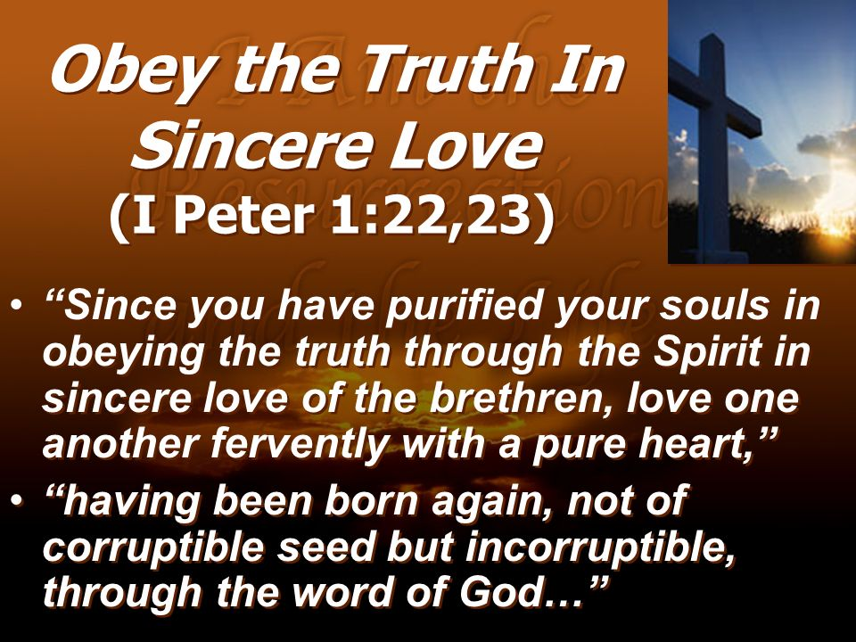 Obey the Truth In Sincere Love (I Peter 1:22,23) Since you have purified your souls in obeying the truth through the Spirit in sincere love of the bre