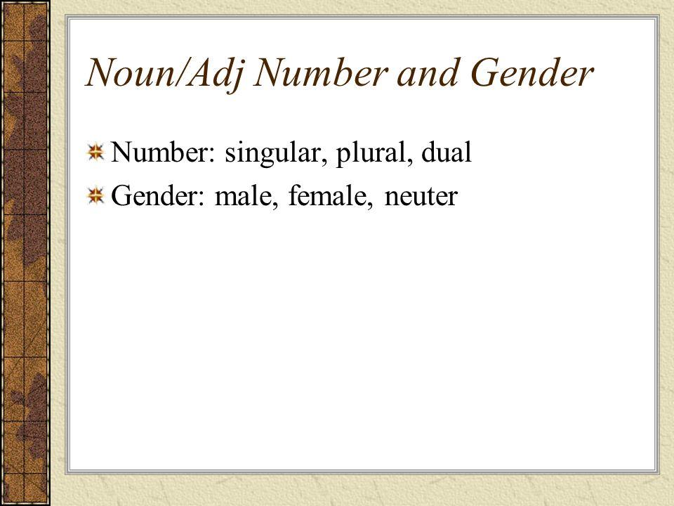 Noun/Adj Number and Gender Number: singular, plural, dual Gender: male, female, neuter