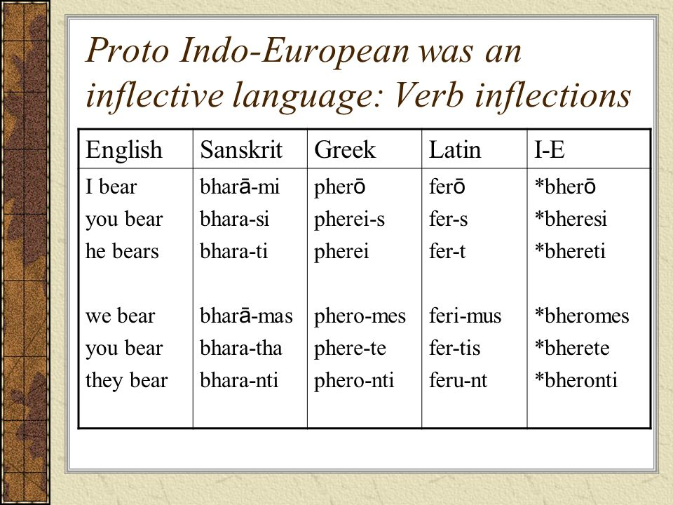 Proto Indo-European was an inflective language: Verb inflections EnglishSanskritGreekLatinI-E I bear you bear he bears we bear you bear they bear bhar