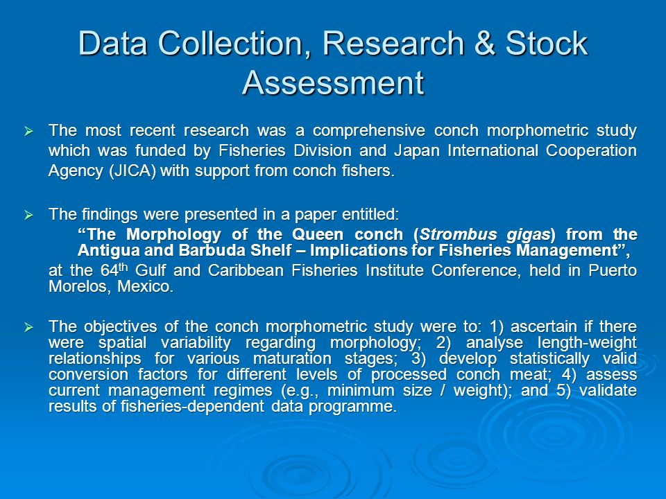Data Collection, Research & Stock Assessment The most recent research was a comprehensive conch morphometric study which was funded by Fisheries Divis