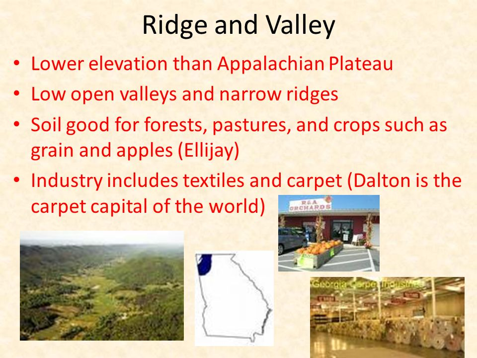Ridge and Valley Lower elevation than Appalachian Plateau Low open valleys and narrow ridges Soil good for forests, pastures, and crops such as grain