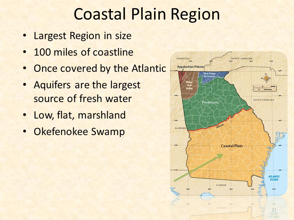 Largest Region in size 100 miles of coastline Once covered by the Atlantic Aquifers are the largest source of fresh water Low, flat, marshland Okefeno