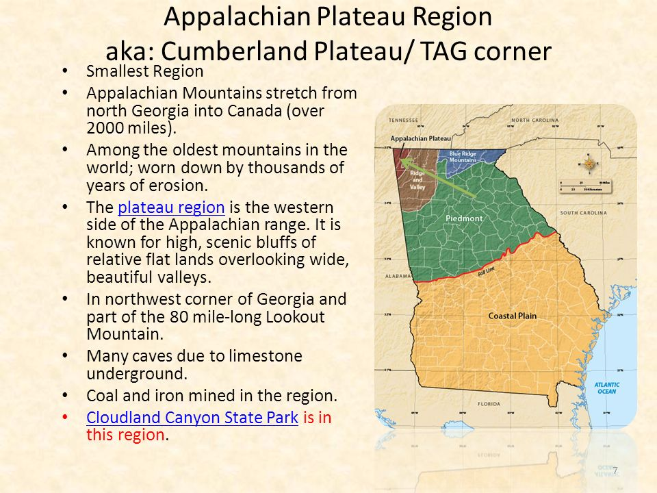 Appalachian Plateau aka: Cumberland Plateau/ TAG corner Worn away by erosion Northwest corner of Georgia Ellisons Cave is 12 th largest Coal fields and iron ore mines Made up of old mountains