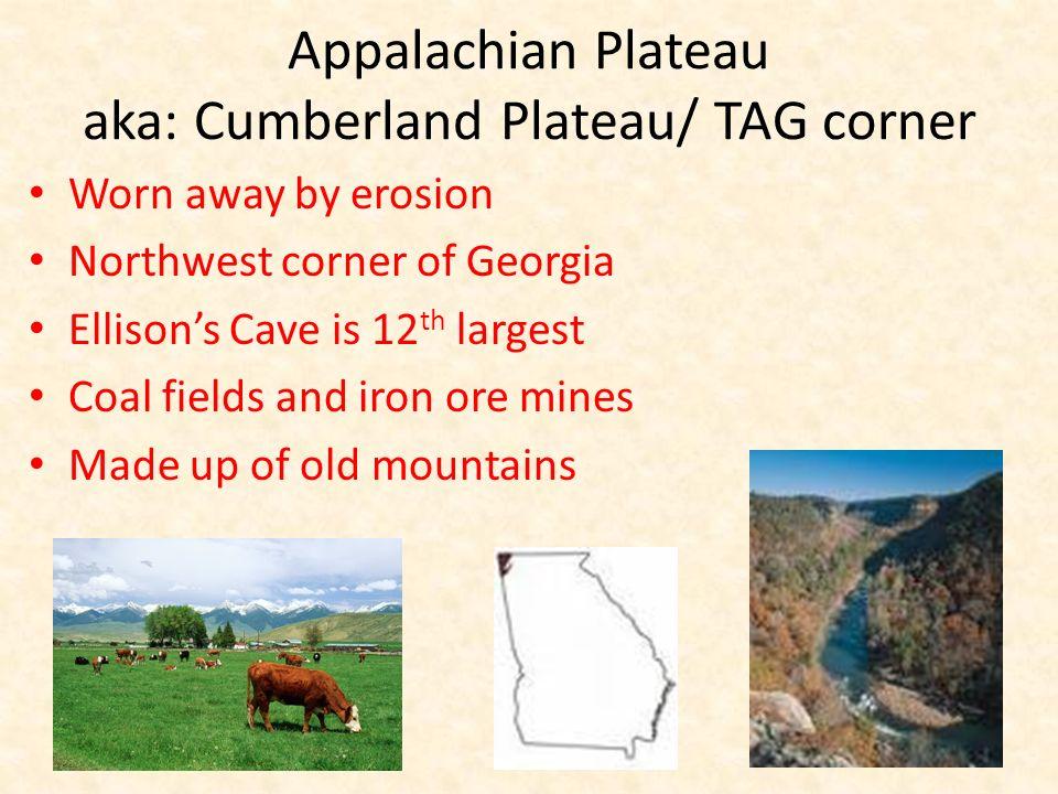 Appalachian Plateau aka: Cumberland Plateau/ TAG corner Worn away by erosion Northwest corner of Georgia Ellisons Cave is 12 th largest Coal fields an