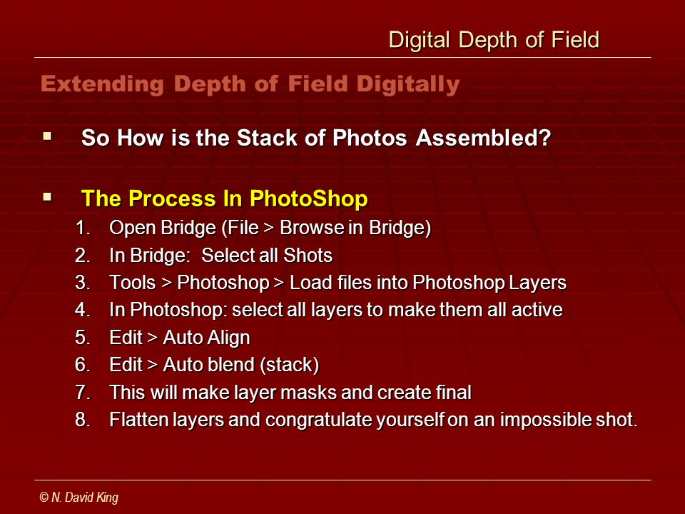 Digital Depth of Field Digital Depth of Field So How is the Stack of Photos Assembled? So How is the Stack of Photos Assembled? The Process In PhotoSh