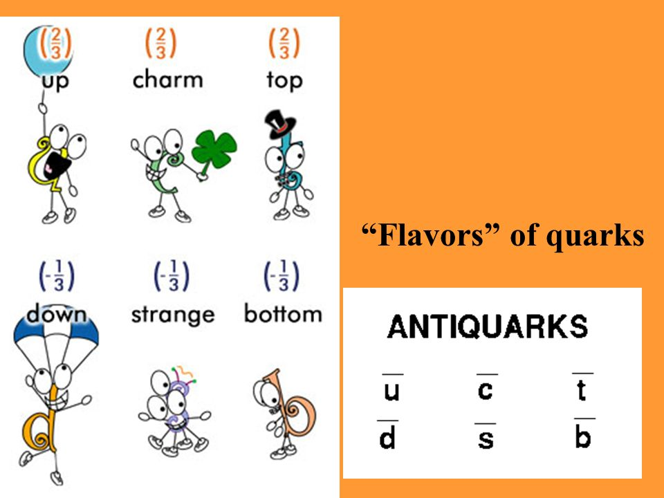 Flavors of quarks