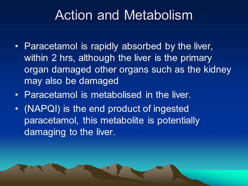 Action and Metabolism Paracetamol is rapidly absorbed by the liver, within 2 hrs, although the liver is the primary organ damaged other organs such as