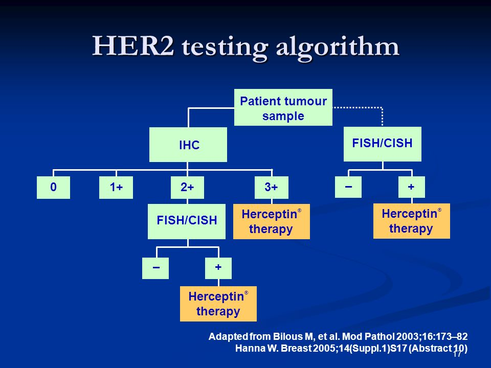 17 HER2 testing algorithm Adapted from Bilous M, et al. Mod Pathol 2003;16:173–82 Hanna W. Breast 2005;14(Suppl.1)S17 (Abstract 10) + – FISH/CISH Pati