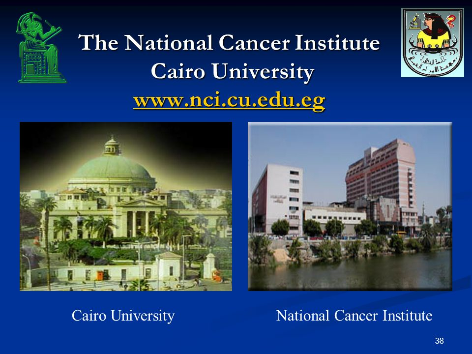 38 The National Cancer Institute Cairo University www.nci.cu.edu.eg www.nci.cu.edu.eg Cairo UniversityNational Cancer Institute