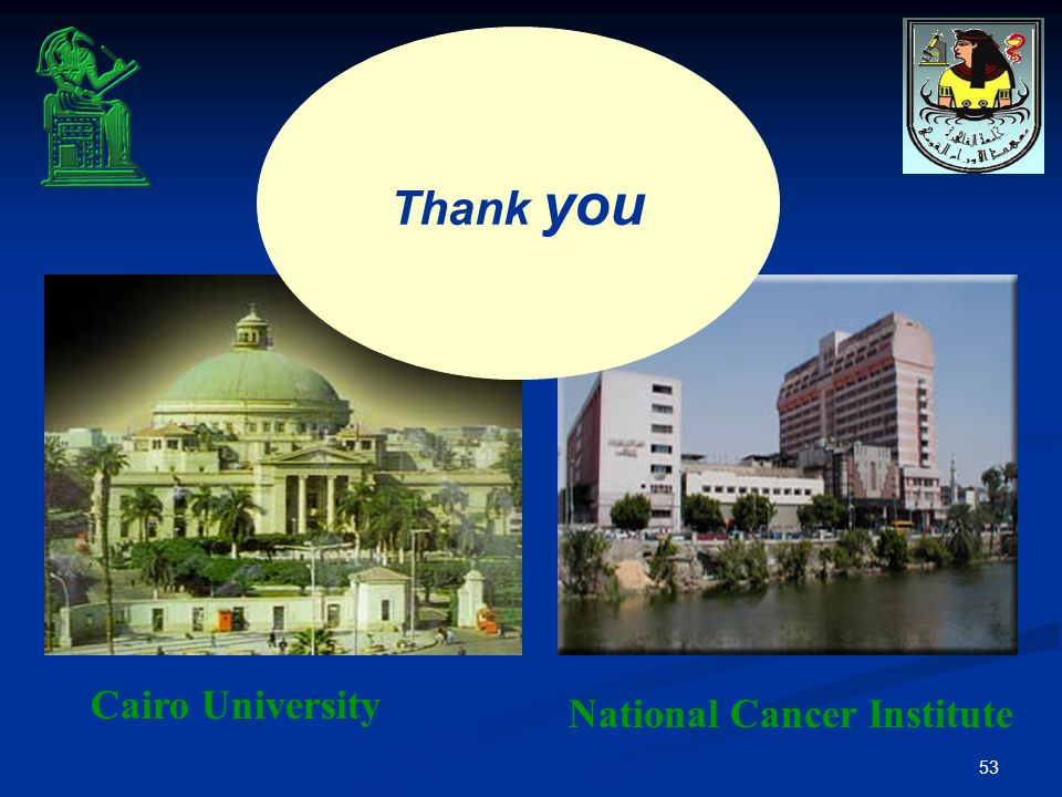 53 Cairo University National Cancer Institute Thank you