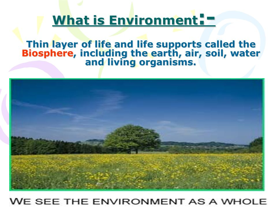 What is Environment :- Thin layer of life and life supports called the Biosphere, including the earth, air, soil, water and living organisms.