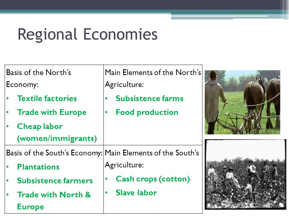 Regional Economies Basis of the Norths Economy: Textile factories Trade with Europe Cheap labor (women/immigrants) Main Elements of the Norths Agricul