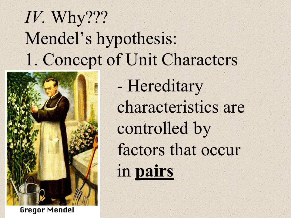 IV. Why??? Mendels hypothesis: 1. Concept of Unit Characters - Hereditary characteristics are controlled by factors that occur in pairs