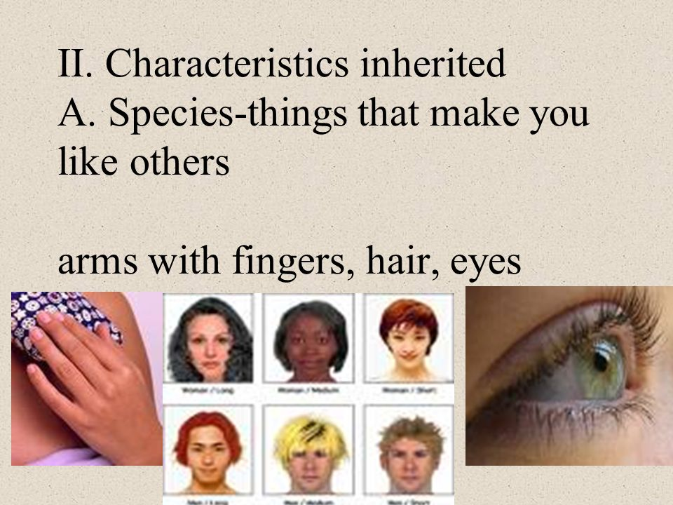 II. Characteristics inherited A. Species-things that make you like others arms with fingers, hair, eyes