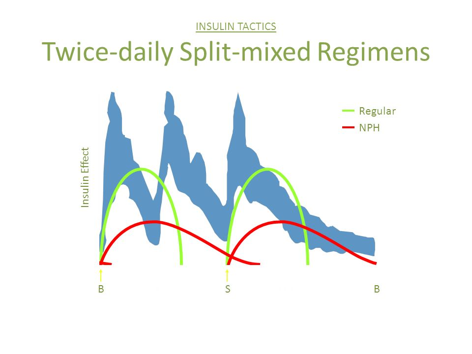 INSULIN TACTICS Twice-daily Split-mixed Regimens Regular NPH BS LHS Insulin Effect B 6- 23