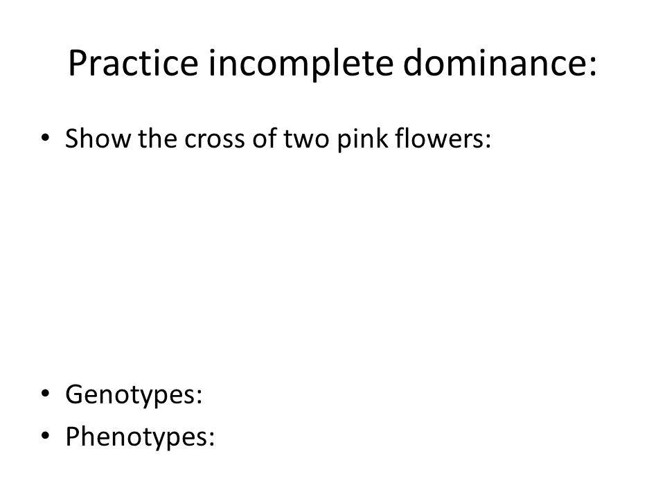 Practice incomplete dominance: Show the cross of two pink flowers: Genotypes: Phenotypes: