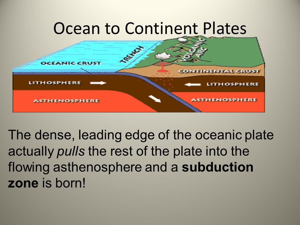Ocean to Continent Plates The dense, leading edge of the oceanic plate actually pulls the rest of the plate into the flowing asthenosphere and a subdu