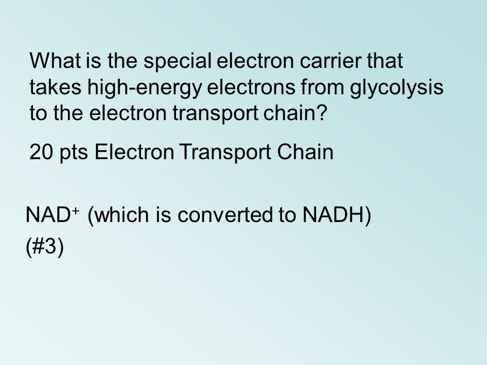 NAD + (which is converted to NADH) (#3) What is the special electron carrier that takes high-energy electrons from glycolysis to the electron transpor