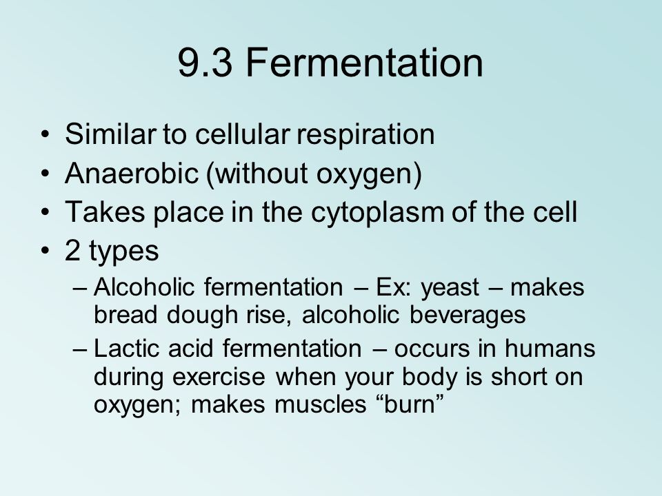 9.3 Fermentation Similar to cellular respiration Anaerobic (without oxygen) Takes place in the cytoplasm of the cell 2 types –Alcoholic fermentation –