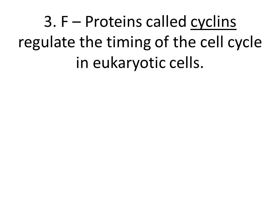 3. F – Proteins called cyclins regulate the timing of the cell cycle in eukaryotic cells.