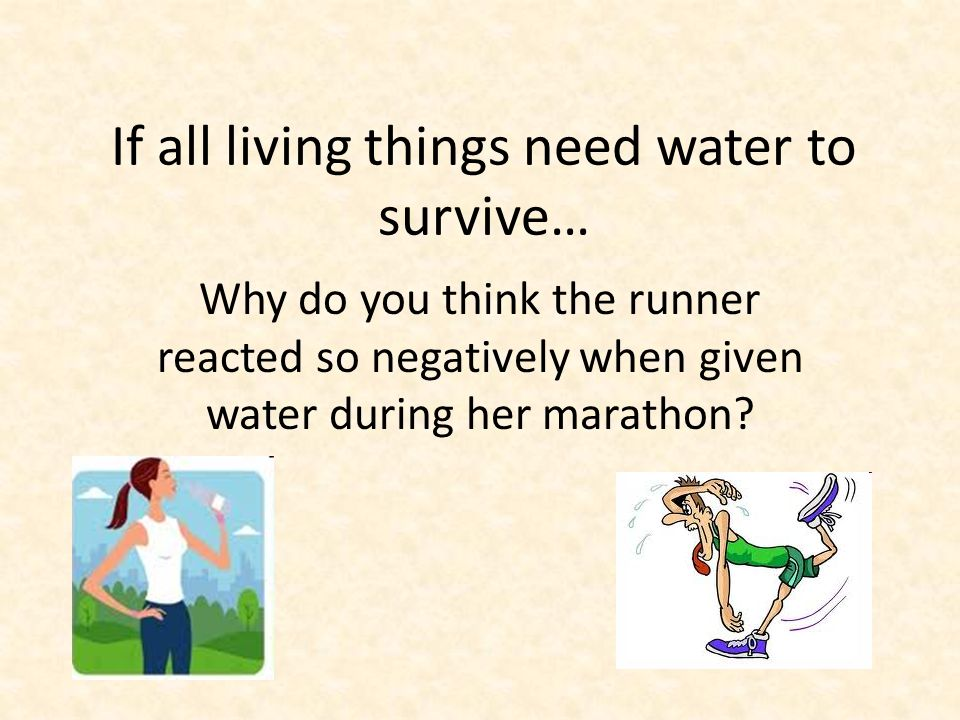 If all living things need water to survive… Why do you think the runner reacted so negatively when given water during her marathon?