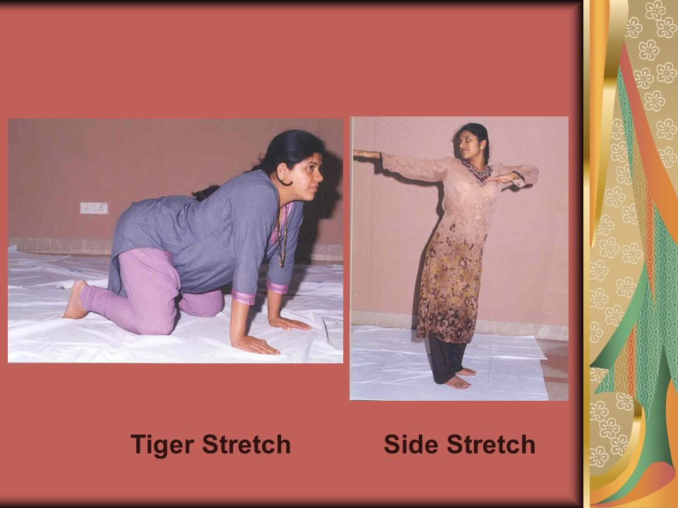 Tiger StretchSide Stretch