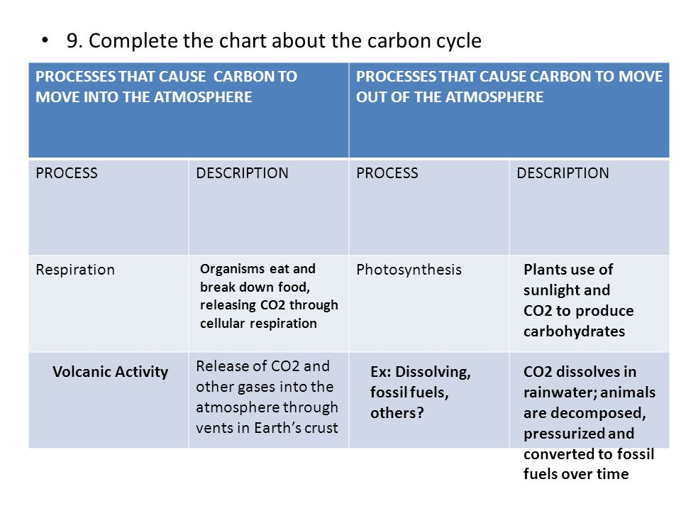 9. Complete the chart about the carbon cycle PROCESSES THAT CAUSE CARBON TO MOVE INTO THE ATMOSPHERE PROCESSES THAT CAUSE CARBON TO MOVE OUT OF THE AT