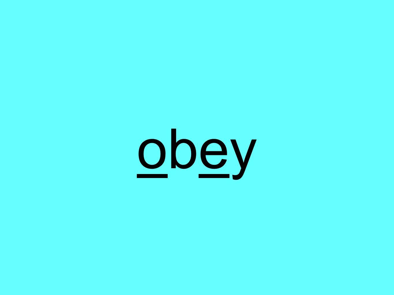 obeyobey