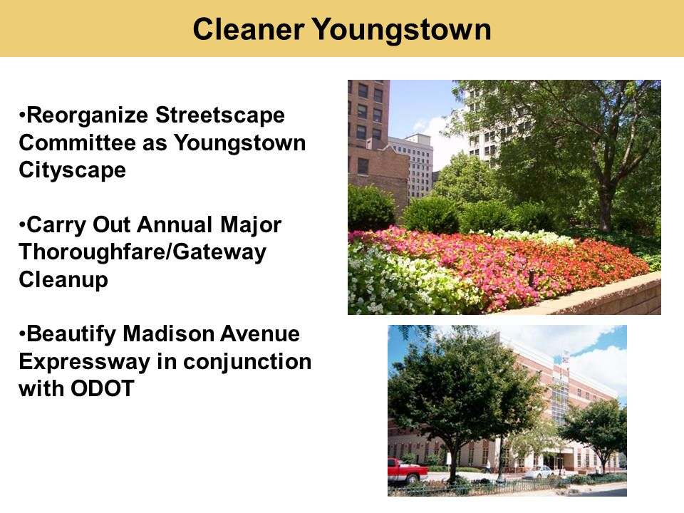 Reorganize Streetscape Committee as Youngstown Cityscape Carry Out Annual Major Thoroughfare/Gateway Cleanup Beautify Madison Avenue Expressway in conjunction with ODOT Cleaner Youngstown
