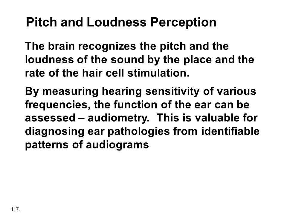 117. Pitch and Loudness Perception The brain recognizes the pitch and the loudness of the sound by the place and the rate of the hair cell stimulation