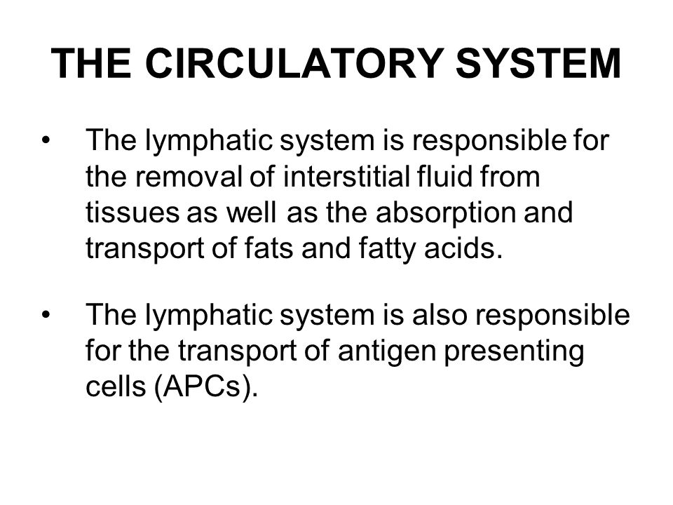 THE CIRCULATORY SYSTEM The lymphatic system is responsible for the removal of interstitial fluid from tissues as well as the absorption and transport