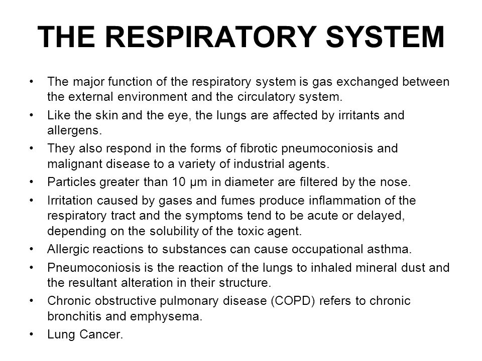 The major function of the respiratory system is gas exchanged between the external environment and the circulatory system. Like the skin and the eye,