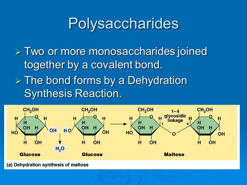 Polysaccharides Two or more monosaccharides joined together by a covalent bond. Two or more monosaccharides joined together by a covalent bond. The bo