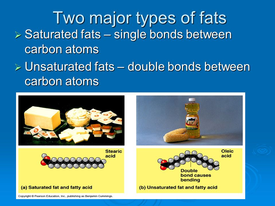 Two major types of fats Saturated fats – single bonds between carbon atoms Saturated fats – single bonds between carbon atoms Unsaturated fats – doubl
