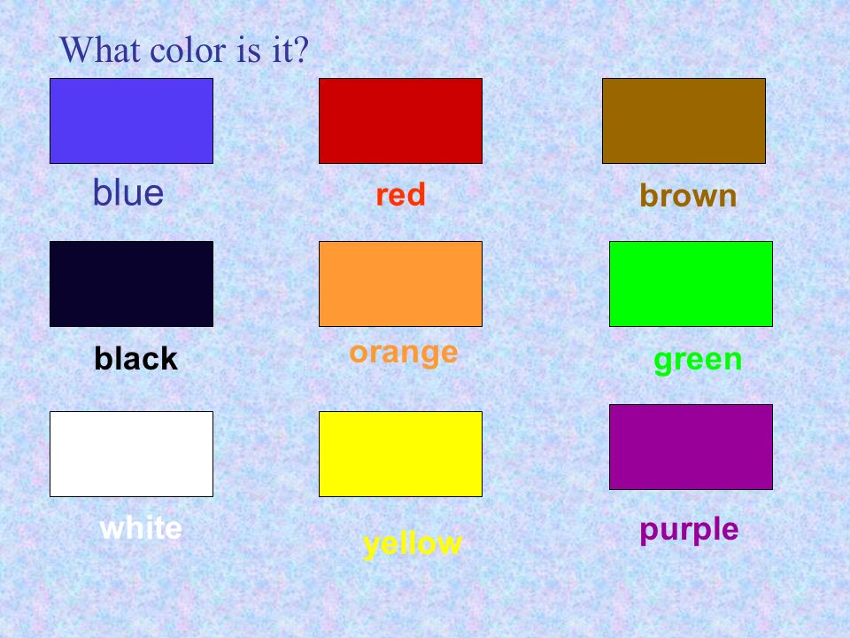 What color is it? Section B Starter Unit 3