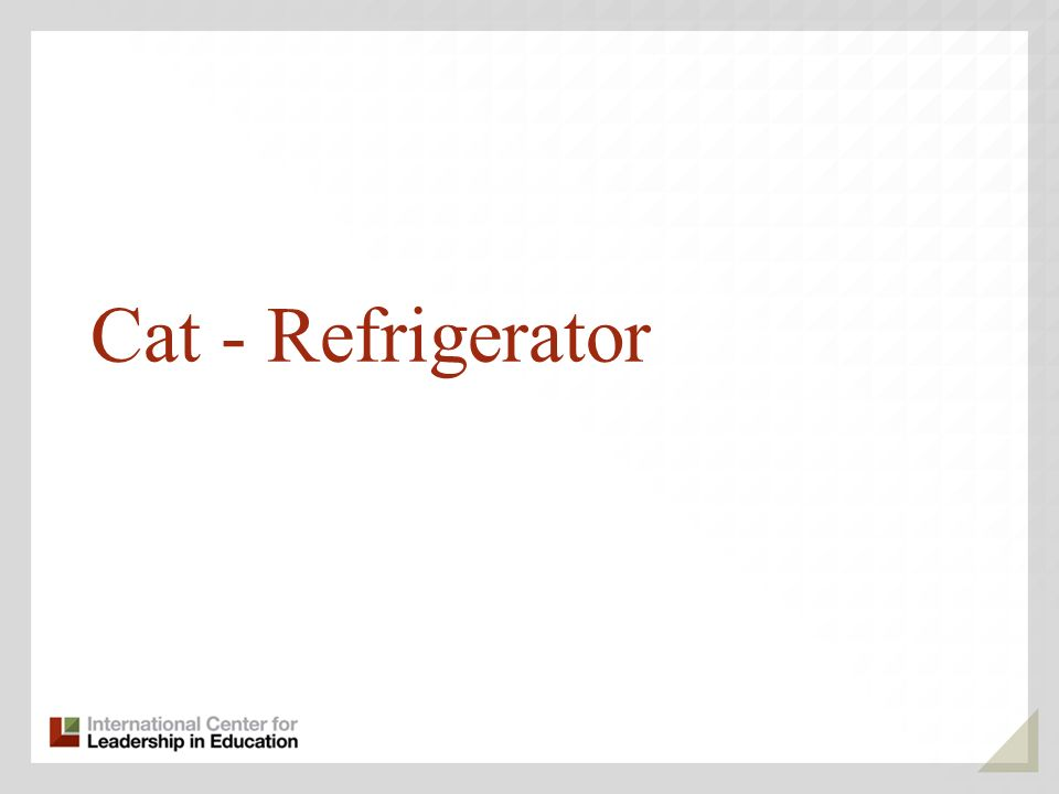 Cat - Refrigerator