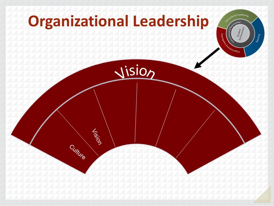 Culture Vision Organizational Leadership