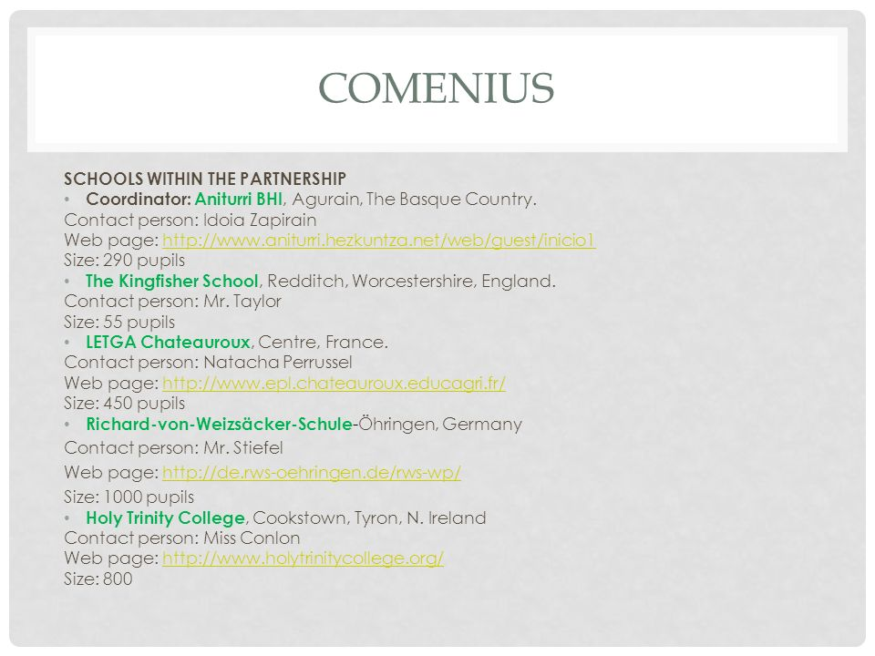 COMENIUS SCHOOLS WITHIN THE PARTNERSHIP Coordinator: Aniturri BHI, Agurain, The Basque Country.
