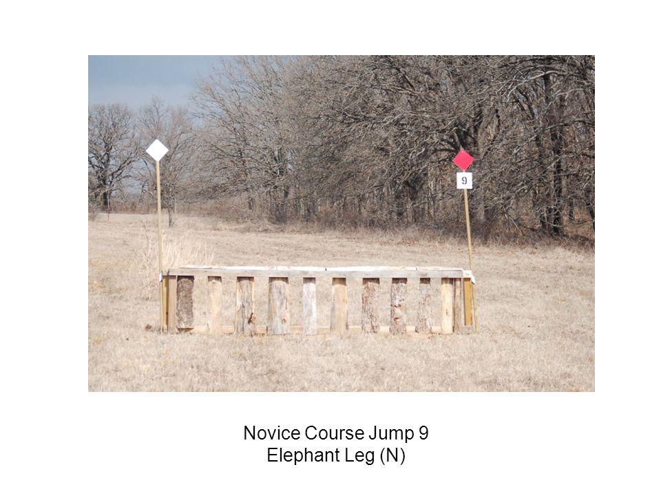 Novice Course Jump 9 Elephant Leg (N)