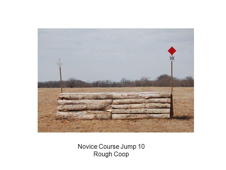 Novice Course Jump 10 Rough Coop